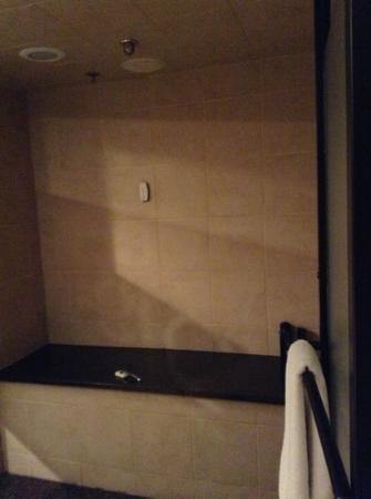 Champagne Lodge and Luxury Suites: shower