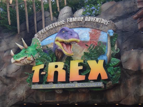Olha a nossa cara bild von t rex orlando tripadvisor for T rex location