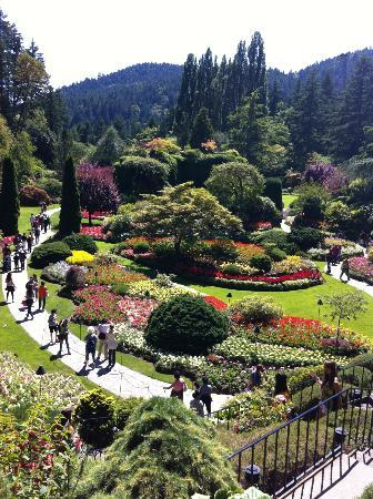 Wondeful Pathways Picture Of The Butchart Gardens Central Saanich Tripadvisor