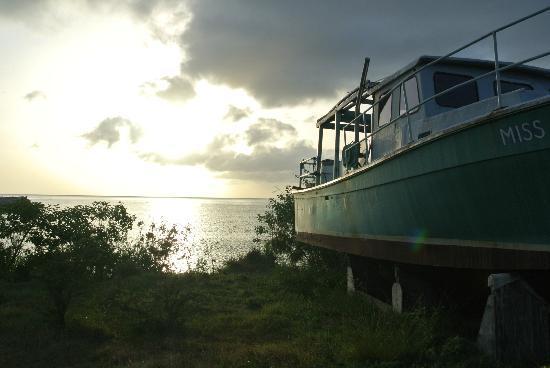 نيفيس: Nevis sunset 