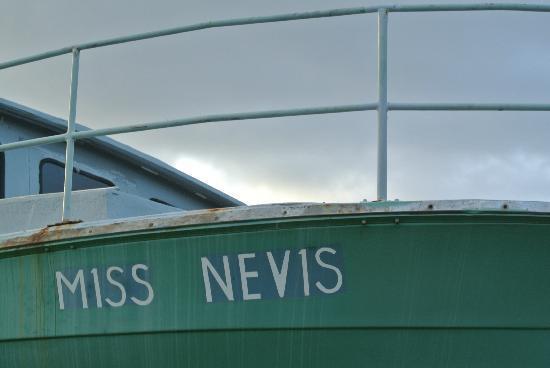 نيفيس: Miss Nevis 