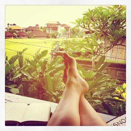 Puri Bayu Guest House: pretty nice paddy view from my terrace