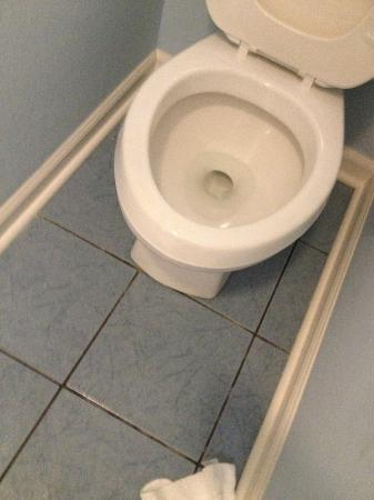 Plantation Resort: wear your seatbelt on this rocking toilet