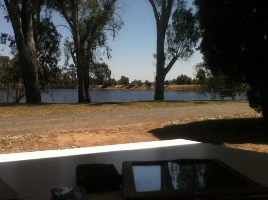 Rutherglen Caravan and Tourist Park: our view from site 6