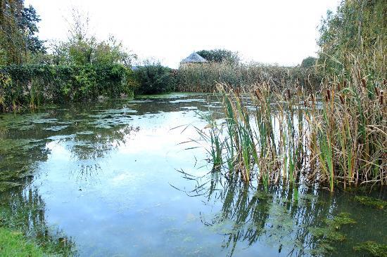 Le Fleuray : Lago