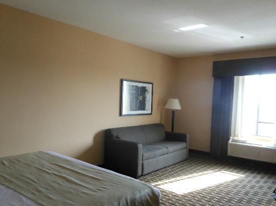 Holiday Inn Arlington: Bright room