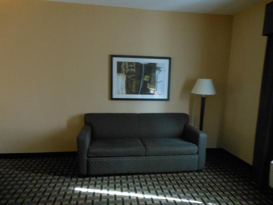 Holiday Inn Arlington: Comfy couch