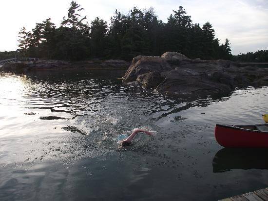 Mount Desert Campground: going for a swim
