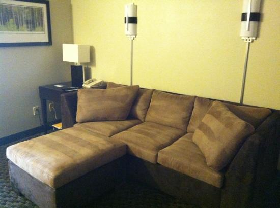 Hyatt Regency Green Bay : sitting room