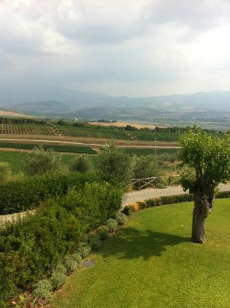 Castello Banfi - Il Borgo: view