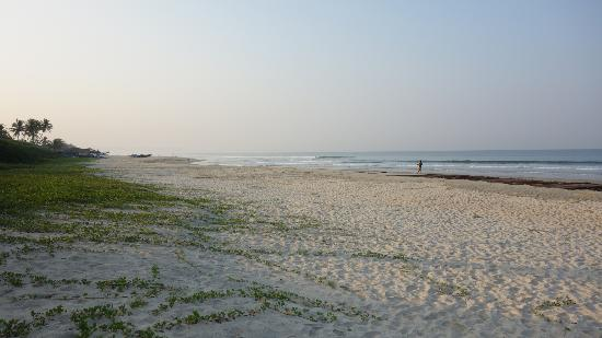 Taj Exotica Goa: Beach in front of resort in the morning