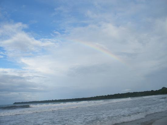 Alby Lodge : Playa Blanca and Cahuita Point