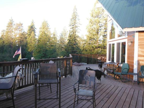 Somewhere Over the Rainbow Lodge: Side and front deck (and dogs)