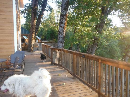Somewhere Over the Rainbow Lodge: Side deck with dog
