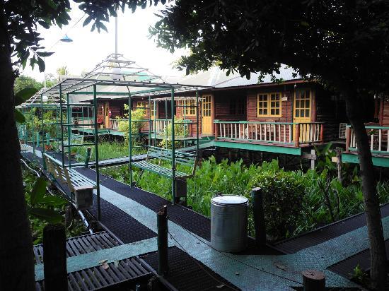 Sam's Guesthouse: une partie des bungalows