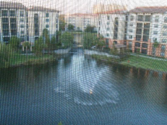 Sheraton Vistana Villages - International Drive: The pond from our screened in balcony