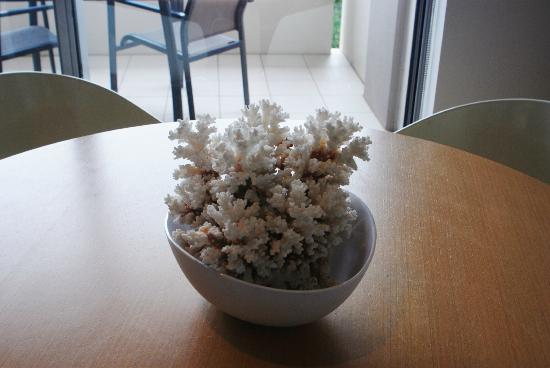 Peppers Salt Resort & Spa: Dining table coral arrangement