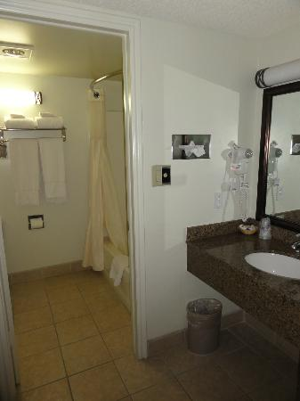 Best Western East Zion Thunderbird Lodge: bathroom