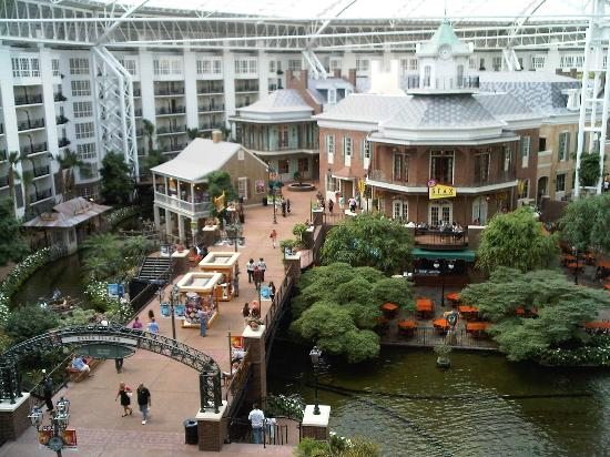 delta island from convention center picture of gaylord. Black Bedroom Furniture Sets. Home Design Ideas