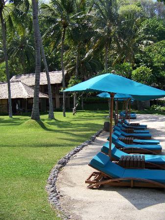 Jeeva Klui Resort: Sunbeds and resort grounds