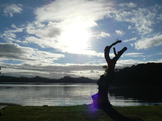 Paihia TOP 10: view from our tent
