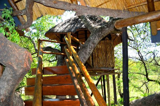 Pezulu Tree House Game Lodge: Aussendusche