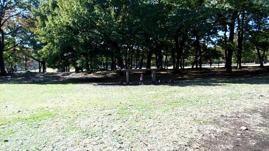 Nogawa Park : 平行棒?