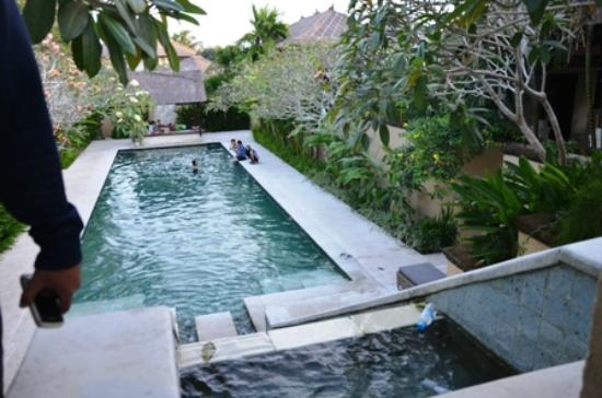 Pat-Mase, Villas at Jimbaran: Master Pool from dining room