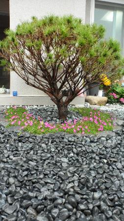 Happy Garden Guesthouse: very very cute!