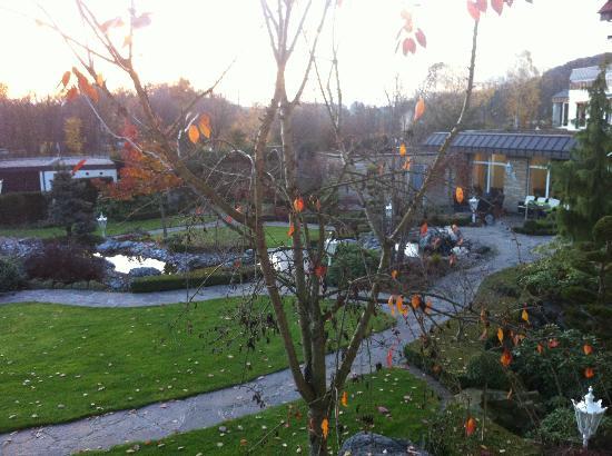 Ringhotel Teutoburger Wald: Dal balconcino si vede la zona relax esterna