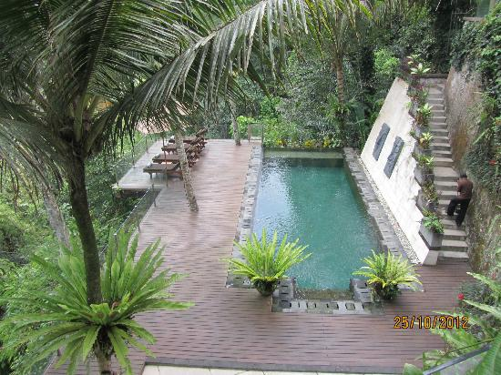 Villa Kalisha: View of the pool & sun deck