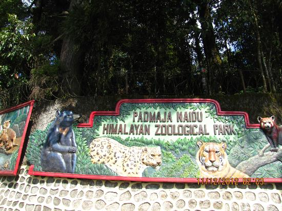 Padmaja Naidu Himalayan Zoological Park: The zoo entrance