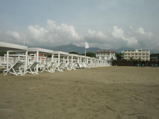 Hotel Il Negresco: Vista dell'albergo dalla spiaggia