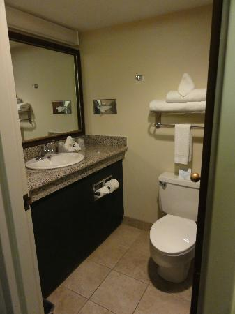 Grand Vista Hotel: Bathroom