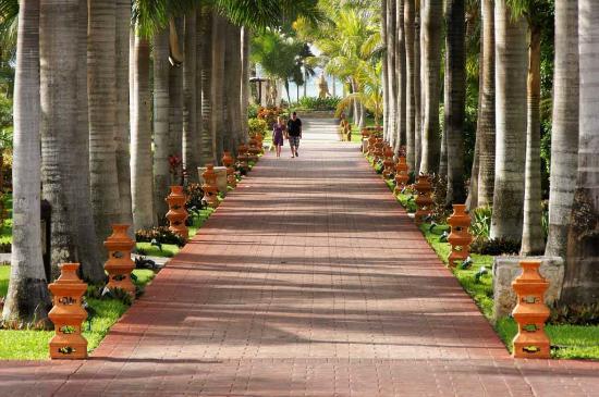 Barcelo Maya Caribe: Allée centrale
