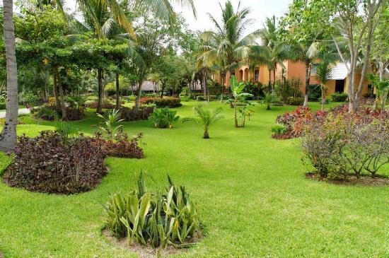 Barcelo Maya Caribe: Jardins