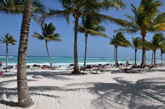 Barcelo Maya Caribe: Plage