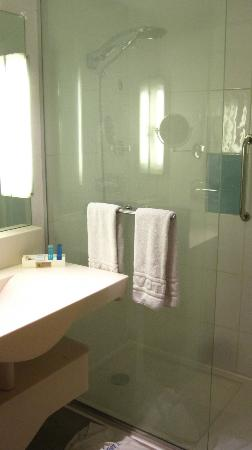 Novotel Cairo El Borg: Bathroom/shower