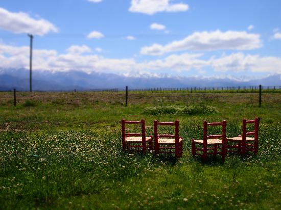 Tupungato, Αργεντινή: The view at bodega La Azul