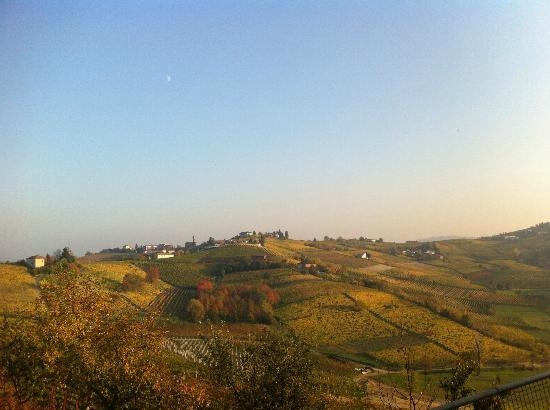 Agriturismo Vecchio Torchio : Bella vista