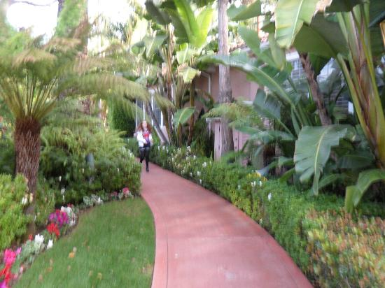 The Beverly Hills Hotel: Walk from main building to bungalow