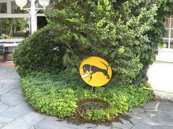 Albergo Losone : Dog friendly hotel