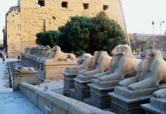 Egyptraveluxe - Day tours: karnak temple