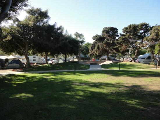 Beach Picture Of Campland On The Bay San Diego Tripadvisor