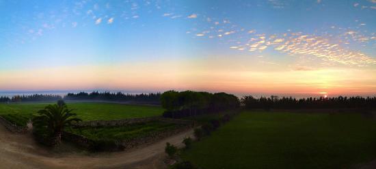 Masseria Bagnara Resort & Spa: una splendida cartolina del mio risveglio all'alba