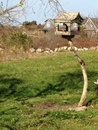 Duck Inn : Breakfast for cardinals, bluejays, and chickadees