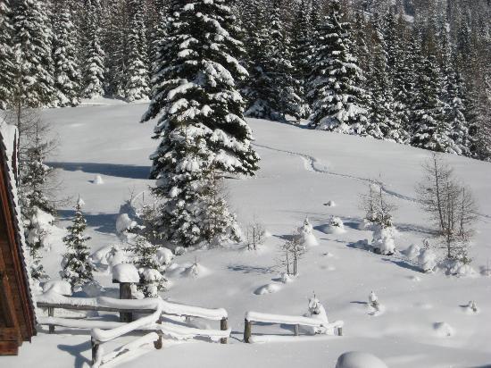 Hotel Wieseneck: Schnee ohne ende