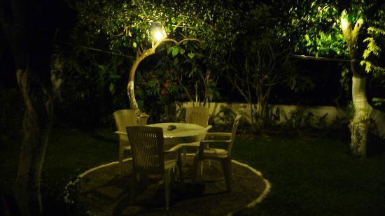 Villa Martha: The garden at night