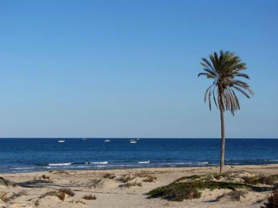 Radisson Blu Ulysse Resort & Thalasso Djerba: Strand unter dem Hotel