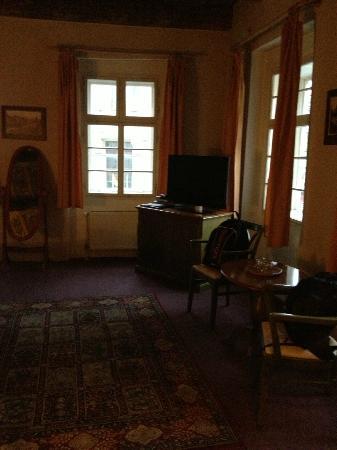 Hotel U Tri Bubnu: camera